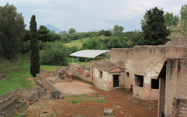 Pompeii in Pictures
