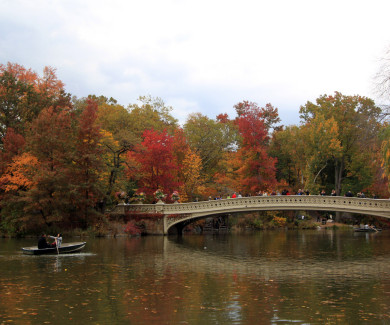 27 PHOTOS OF FALL FOLIAGE IN CENTRAL PARK