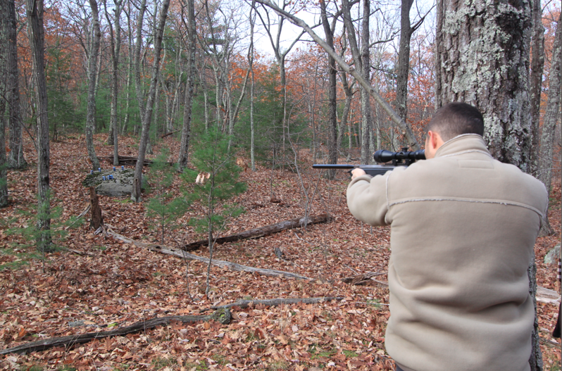Shooting Air Rifles