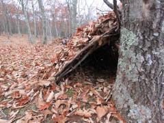 Inside the Debris Hut